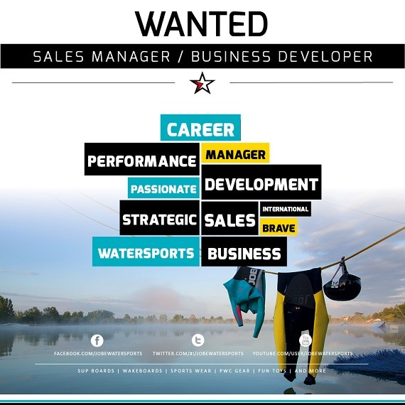 Jobe Sales Manager / Business Developer vacancy