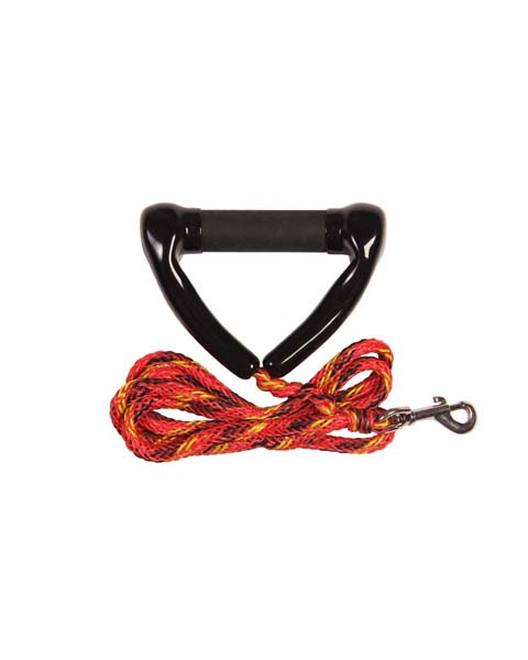 Jobe Dog Leash